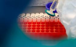 ОХУ-д өнгөрсөн хоногт 21983 хүн Covid-19-өөр халдварлажээ