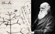 Чарльз Дарвины гар тэмдэглэл Кембриджийн номын сангаас алдагджээ