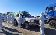 Нүүрс тээврийн 1000 гаруй жолоочоос PCR шинжилгээ авчээ