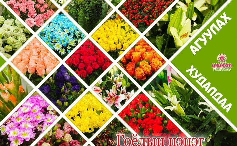 Гоёлын цэцгийн агуулах худалдаа