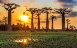 Мадагаскар жижиг арлууд болон хуваагдаж байна