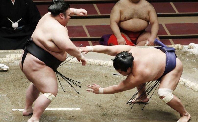 Такакэйшо, Шиманоүми нар башёг тэргүүлж байна