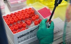 Халдвартай ажилтнаас болж 17000 хүн цар тахлын шинжилгээ өгчээ