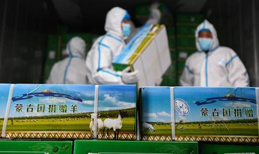 Монголын хандивласан хонийг төхөөрч, Ухань руу илгээжээ