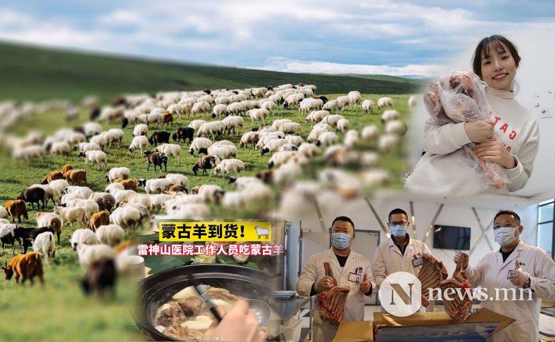 Монголын бэлэглэсэн хонь Уханийн эмч нарт хүрчээ