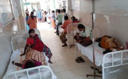 Энэтхэгт дэгдсэн нууцлаг өвчний тухай юу мэдэх хэрэгтэй вэ?