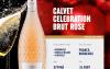 calvet celebration brut rose