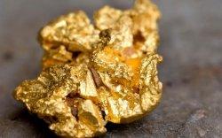 27.7 тонн хагас боловсруулсан алт экспортолжээ