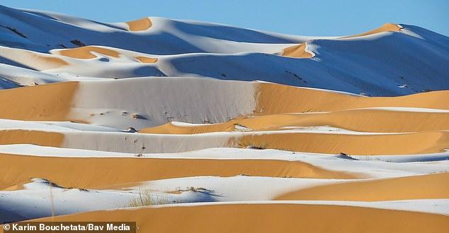 38110744-9156697-Photographer_Karim_Bouchetata_s_stunning_images_showed_snowfall_-a-85_1610897374722