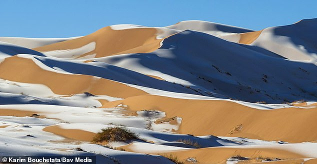 38110754-9156697-This_month_has_seen_snowfall_in_the_Sahara_and_temperatures_in_S-a-82_1610897374719