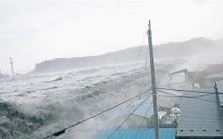 Чилид цунамигийн түгшүүр зарлажээ