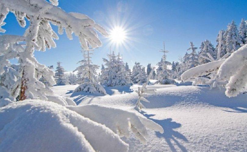 Ойрын өдрүүдэд цасан шуурга шуурч, хүйтний эрч чангарна