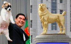 Туркменистан нохойд зориулсан үндэсний баярын өдөртэй болов