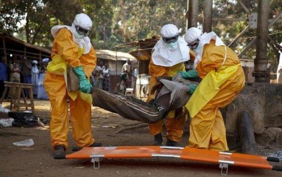 Гвинейд эбола вирусийн халдвар дэгдэж 3 хүн нас баржээ
