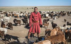 """Их Британийн """"Dailymail"""" сонин монголчуудын нүүдэлчин соёлыг онцолжээ"""