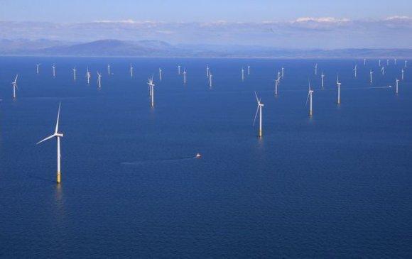 Өмнөд Солонгост хамгийн том салхин цахилгаан станцыг барина
