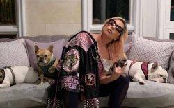Лэйди Гага нохдоо олж өгсөн эмэгтэйг 500 мянгаар шагнана