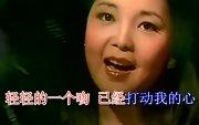 """Танил Хятад дуу: """"Сар миний сэтгэл зүрхийг төлөөлдөг"""""""