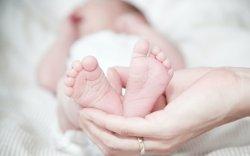 Францад сав шилжүүлэн суулгуулсан бүсгүй хүүхэд төрүүлжээ