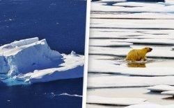 Дэлхийд жил бүр 1.2 их наяд тонн мөс хайлж байна