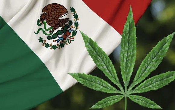 Мексик улс каннабисыг хуульчилна