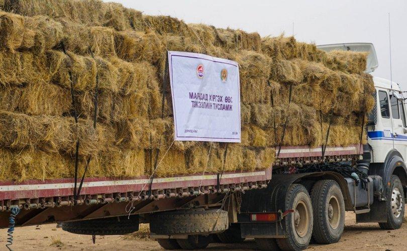 Хэрлэн сумын малчдад улсын аюулгүйн нөөцөөс өвс, тэжээлийн дэмжлэг үзүүлэв