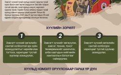 Инфографик: Зэвсэгт хүчний тухай хуулийн танилцуулга