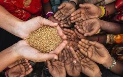 НҮБ: Дэлхий урьд өмнө нь тохиож байгаагүй их өлсгөлөнд ойрхон байна