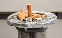 Эрдэмтэд: 10-20 жилийн дараа залуус тамхинаас бүрэн татгалзана