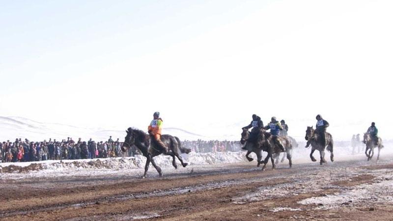 Нууцаар хурдан морь уралдуулсан хүмүүст хариуцлага тооцжээ