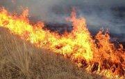 Сүхбаатар аймагт хээрийн түймэрт 80 мянган га талбай шатжээ