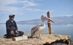 """""""Азбаяр хотон шувууны далавчийг Монголд эмчлэх боломжгүй"""""""