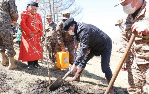 Сурвалжлага: Цэргийнхэн шүтээн хайрхандаа 20 мянган мод тарилаа