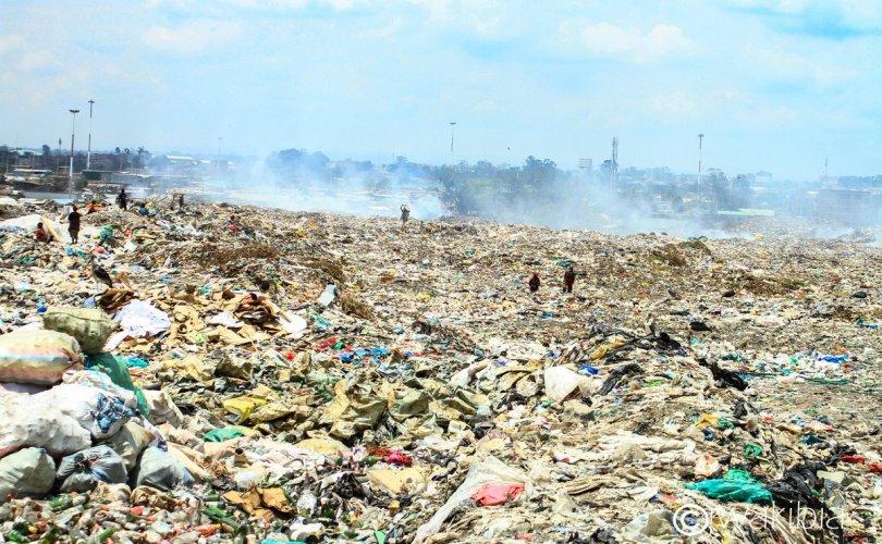 Дэлхийн нийт хуванцар хаягдлын 55 хувь нь 20 компанитай холбоотой
