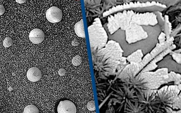 NASA Ангараг дээр амьдрал бийг баталсан зургуудыг дэлгэв