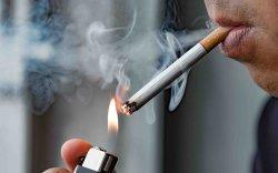 Таван эрэгтэй тутмын нэг нь тамхинаас болж нас барж байна