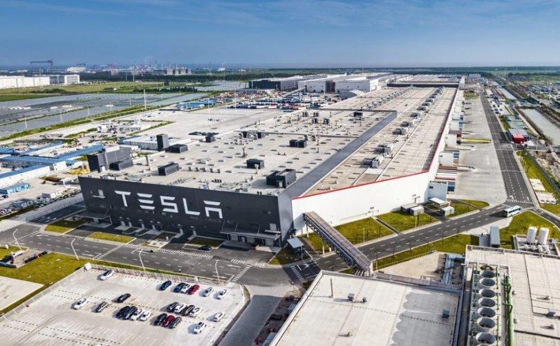 """""""Tesla"""" үйлдвэрээ ОХУ-д байгуулж магадгүй"""
