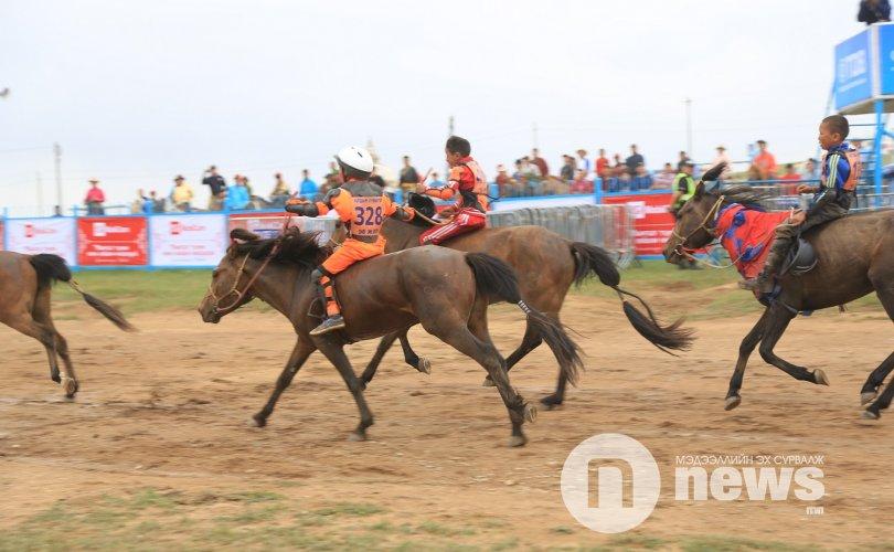 Хурдан морьдыг ялгах ажилд УИХ-ын гишүүд оролцоно