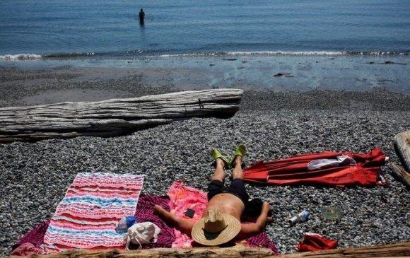 Канадад 47.9 градус хүрч халснаас 60 гаруй хүн нас баржээ