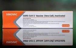 """Хятадын """"Sinovac"""" компанийн вакциныг ДЭМБ бүртгэлээ"""