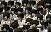 Израил ангийн арьс худалдахыг хориглосон анхны улс боллоо