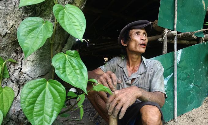 """Вьетнамын""""Тарзан""""тосгоны амьдралд дасалгүйширэнгэдээамьдрах болжээ"""