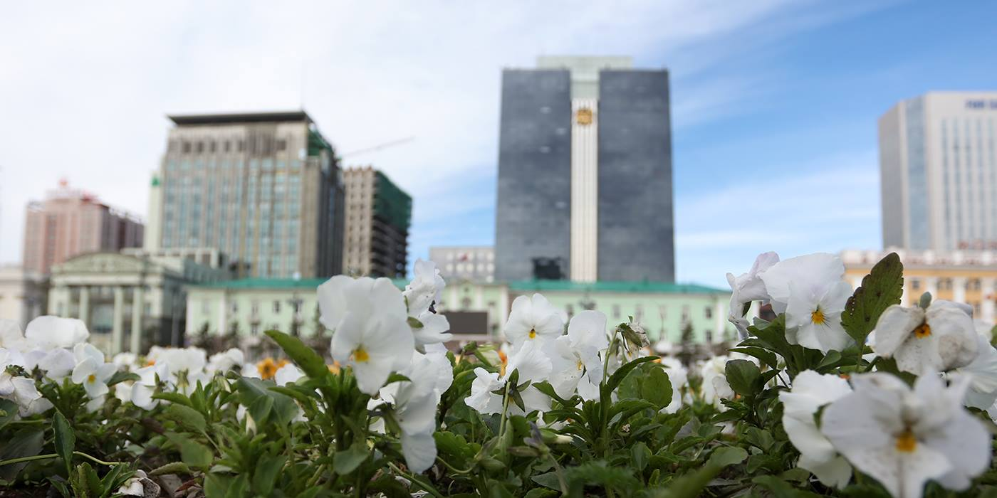 ub flower (1)