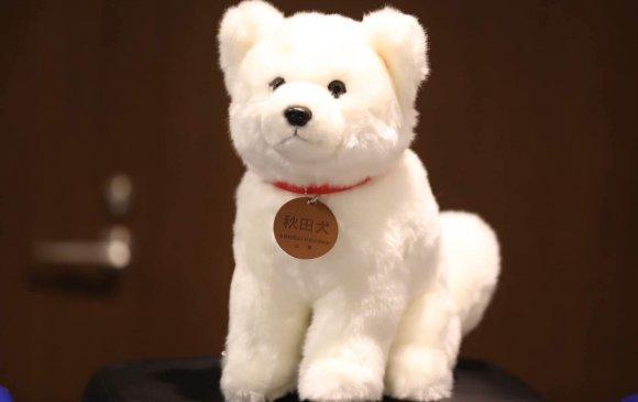 Японы Ерөнхий сайд Л.Оюун-Эрдэнэд Акита нохой бэлэглэжээ