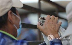 СУРВАЛЖЛАГА: Хорхогны хонь 300 мянган төгрөг