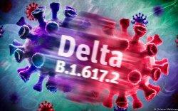 """""""Дельта"""" хувилбар дэлхийн 111 улсад тархжээ"""