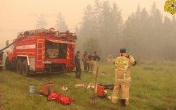 Сибирьт түймрийн улмаас агаарын бохирдол ихсэв