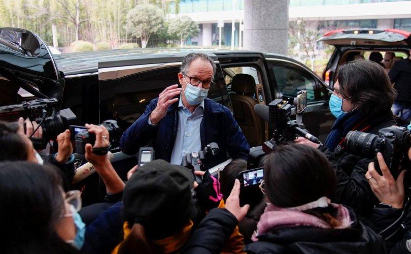 ДЭМБ Хятадын талаас вирусийн мэдээлэл, дээж явуулахыг хүсчээ