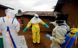 Эбола вирусийн халдвар давтагдаж болзошгүй