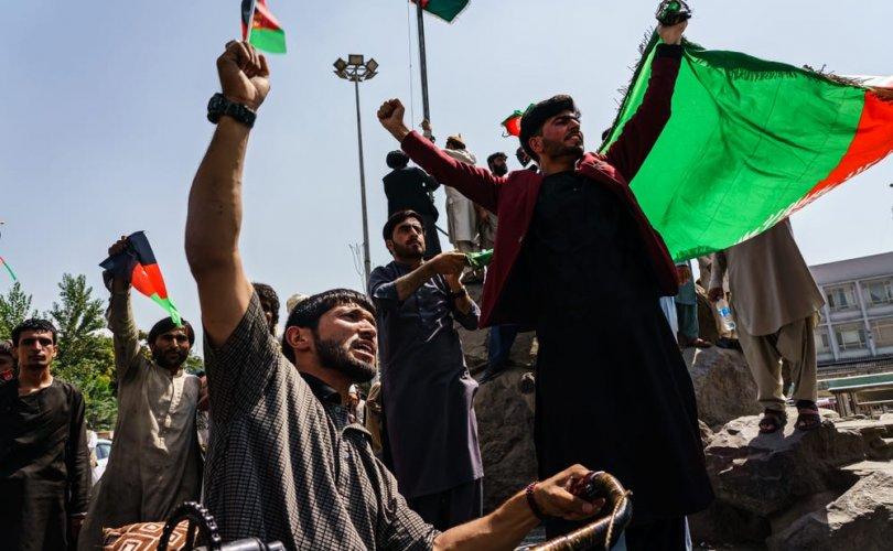 Афганчууд гурван мужаас талибуудыг хөөн гаргалаа